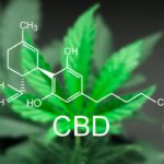 What is the difference Between Isolate, Full-Spectrum, and Broad-Spectrum CBD?